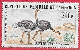 Oiseau - Cameroun PA N°55 200F Autruche 1962 * - Autruches
