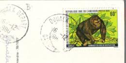 Gorilla Stamp 1979  Cameroun  On Postcard  (b) - Camerun (1960-...)