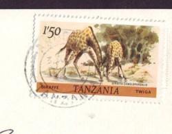 Giraffe  Stamp Tanzania '80  On Postcard - Tanzania (1964-...)