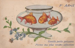 Voeux : 1ér Avril : Poissons Hagard Dans L 'aquarium : - 1 De April (pescado De Abril)