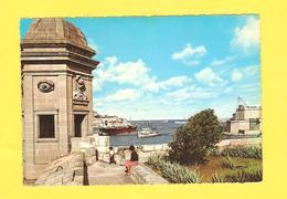 Postcard - Malta     (V 33529) - Malta