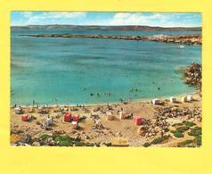 Postcard - Malta     (V 33531) - Malta
