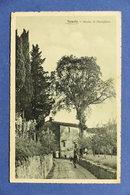 Cartolina Fiesole - Strada Di Vincigliata - 1916 - Firenze