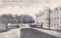 CPSM 9X14  De BELGIQUE - BELOEIL - VUE Du CHATEAU Dans Le PARC - Beloeil