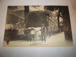 6dhg - CPA N°1 - LOURDES - Attelage Du Pays - [65] Hautes Pyrénées - - Lourdes