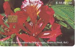 TARJETA DE CUBA DE LA FLOR DEL FLAMBOYAN (FLOWER) - Cuba