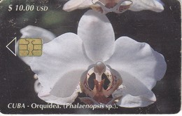 TARJETA DE CUBA DE UNA ORQUIDEA  (FLOR-FLOWER) ORCHID - Flores