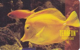 TARJETA DE PUERTO RICO DE UN PEZ AMARILLO (PEZ-FISH) (TERAFON) - Puerto Rico