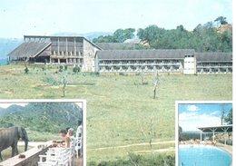 KENYA : Ngulia Safari Lodge - Kenya
