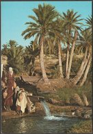 Oasis De Tunisie, C.1960s - Kahia CPM - Tunisia