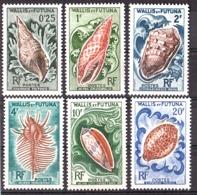 Wallis & Futuna - 1962/63 - N° 162 à 167 - Neufs ** - Coquillages - Ungebraucht