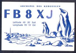 QSL Cards Amateur Radio - Archipel Des Kerguelen 1975 - Penguins - 3 - Radio Amatoriale