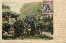 Pays Div -ref N115- Costa Rica - Parque En Lemon  - Carte Bon Etat - - Costa Rica