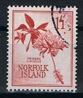 Norfolk Y/T 36 (0) - Ile Norfolk