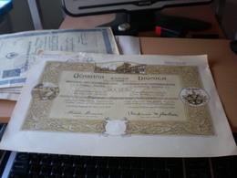 Stara Pazova Ucastina Dionica  Staropazovskej Banky Ucastinarskeho Spolku 120 1920 1 Avgust - Serbie