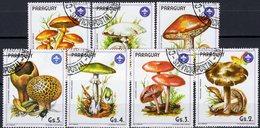 Pilzarten 1985 Paraguay 3835/1 O 6€ Naturschutz Pilze Knollenblätterpilz Kartoffelbovist Ritterling Flora Mushrooms - Piante Velenose