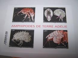 TAAF Année 2017 :  Bloc Amphipodes De Terre Adélie - Blocs-feuillets