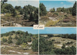 Fano, Denmark, Multi View, Used Postcard [22138] - Denmark