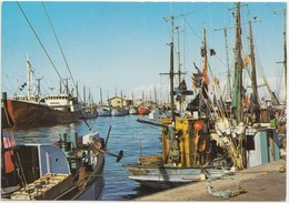 Hirtshals, Denmark, 1984 Used Postcard [22142] - Denmark