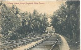 Alte Ansichtskarte Von  Sri Lanka - Ceylon - Sri Lanka (Ceylon)