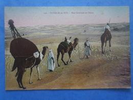 Paysage Du Sud , Une Caravane Au Désert , écrite Au Verso , Dos Vert - Postcards
