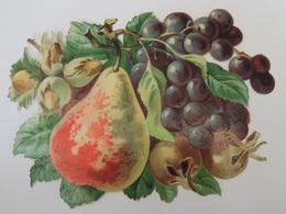 Découpis / Découpi - Ensemble De Fruits Noisettes Poire Raisin - Grandes Dimensions -  Chromo -  3B1 - Découpis