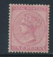 NATAL, 1874 1d Dull Rose (wmk CC) Unused No Gum, SG66, Cat £55 - Zuid-Afrika (...-1961)