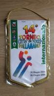 Pennant Handball 14. Torneo Citta Di Torri Pallamanano Italy 2004 24x38cm - Handball
