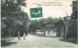 FORET DE SENART ... ALLEE DE L ERMITAGE AU CHENE D ANTIN - Unclassified