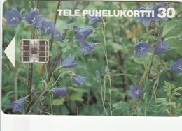 Finland - Peach-leaved Bellflowers - D77 - Finland