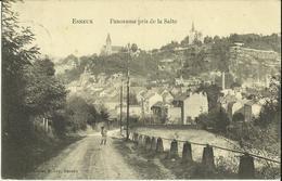 Esneux -- Panorama Pris De La Salte.    (2 Scans) - Esneux