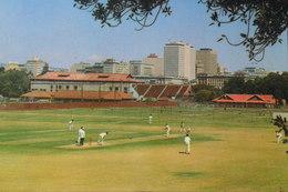 Playing Cricket In Adelaida - Cricket