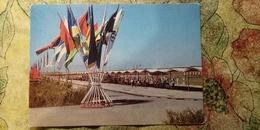 SOVIET SPORT. Archery Field.  Turkmenistan. Ashkhabad. OLD Postcard 1977 Stationery - Archer - Arch - Tir à L'Arc