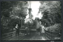 Photo Pérève Format CPA - Train FACS - Mai 1958 - A L'Entrée Du Pont Des Rochers Noirs (Lapleau/Soursac) - Voir 2 Scans - Trains