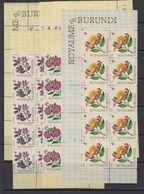 Burundi 1966 Flowers 7v 10x ** Mnh (F7598) - Burundi