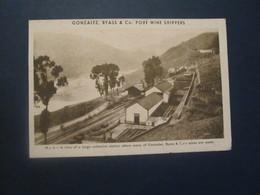 Portugal Postcard, Publicitário, Gonzalez, Byass E Co. Port Wine Shippers - Postcards