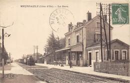 40 CP(SNCF MEURSAULT+URSANNE+ACHERES+POUILLENAY)Houblon(rare)+Musiciens+Milit(Humour Coquin)+ Fant.+Folkl+divers... N°61 - Cartes Postales