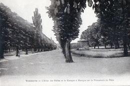 89 - TONNERRE - L'Allée Des Poilus Et Le Kiosque à Musique Sur La Promenade Du Pâtis - Tonnerre