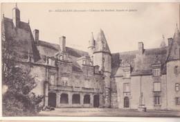 CPA - 401. MEZANGERS (MAYENNE) -  Château Du Rocher Façade Et Galerie - France