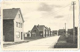8En-223: Loppem St-Martinusstraat Rue St.Martin  Nels - Zedelgem
