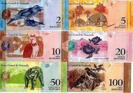 LOT SET SERIE 6 BILLETS VENEZUELA  ANIMAUX DAUPHIN OISEAU TORTUE HIBOU UNC NEUF - Billets