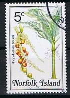 Norfolk Y/T 319 (0) - Ile Norfolk