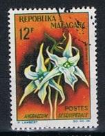 Madagascar Y/T 387 (0) - Madagascar (1960-...)