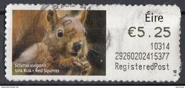 Lotto BBBB Fauna Alla Rinfusa (24 Immagini) - Postzegels