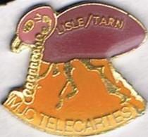 LISLE SUR TARN - MJC TELECARTES - Computers