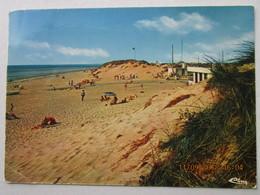 CP 50 GOUVILLE  Sur MER  - La Plage  , Les Dunes 1979 - France