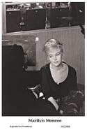 MARILYN MONROE - Film Star Pin Up PHOTO Postcard - 201-806 Publisher Swiftsure Postcards 2000 - Artistes