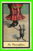 HUMOUR, COMICS - NO THOROUGHFARE - RAT - TRAVEL IN 1913 - - Humour