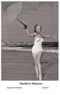 MARILYN MONROE - Film Star Pin Up PHOTO Postcard - 201-814 Publisher Swiftsure Postcards 2000 - Artistes