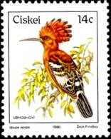 BIRDS-AFRICAN HOOPOE- CISKIE -1986-MNH-H-557 - Climbing Birds